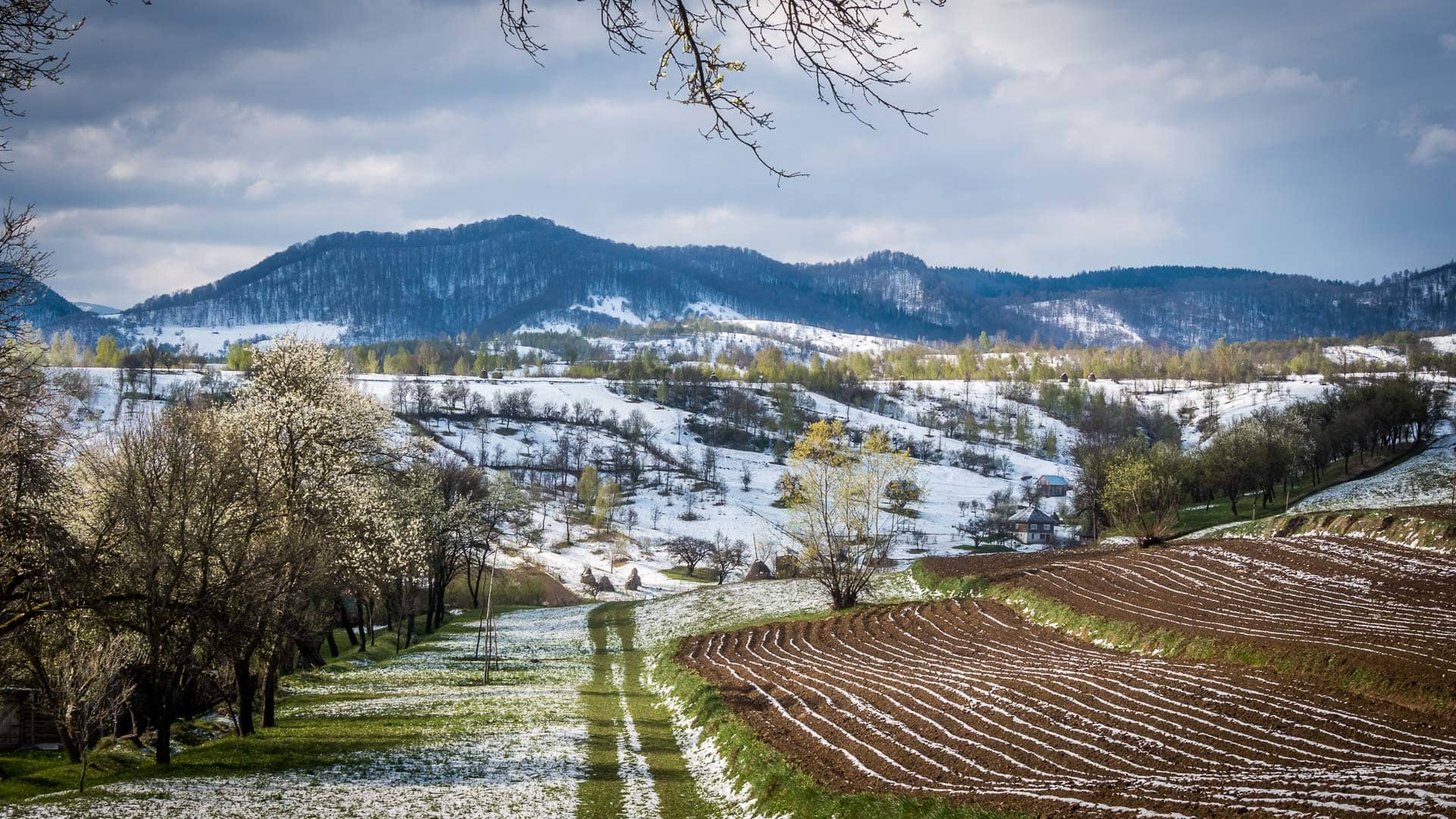 Captivating photos of Romania in spring photo article - landscape, between winter and spring