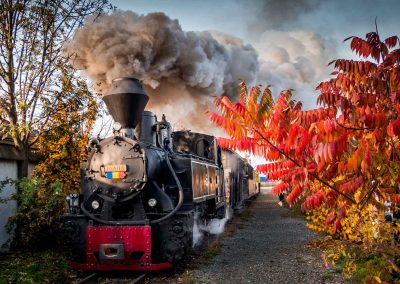 Mocanita Hutulca in autumn