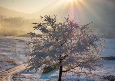 Sunrise in the cold winter morning