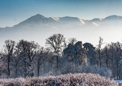 WInter scenery in Transylvania