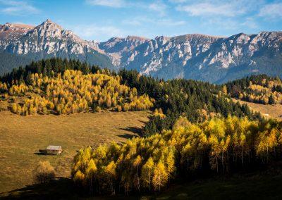 Autumn Colors Photo Tour of Romania