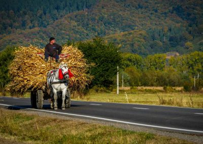 People traveling by horsecart